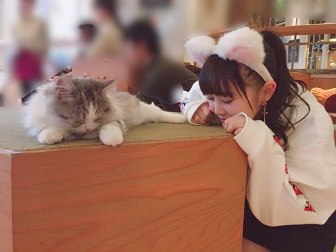 伊藤小春の画像 p1_11