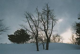 黒島結菜撮影風景写真