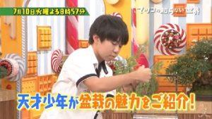 東山拓仁(中学生)天才盆栽少年がマツコの知らない世界出演!受賞歴や作品やプロフィールは?